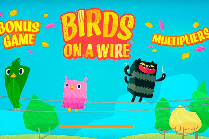 Особенности слота «Birds on a Wire» от нового производителя Thunderkick